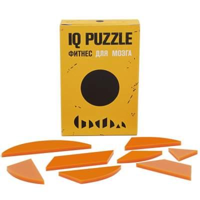 Головоломка IQ Puzzle Figures