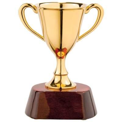 Купить Награда «Кубок» с нанесением 2700р.