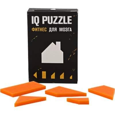 Головоломка IQ Puzzle